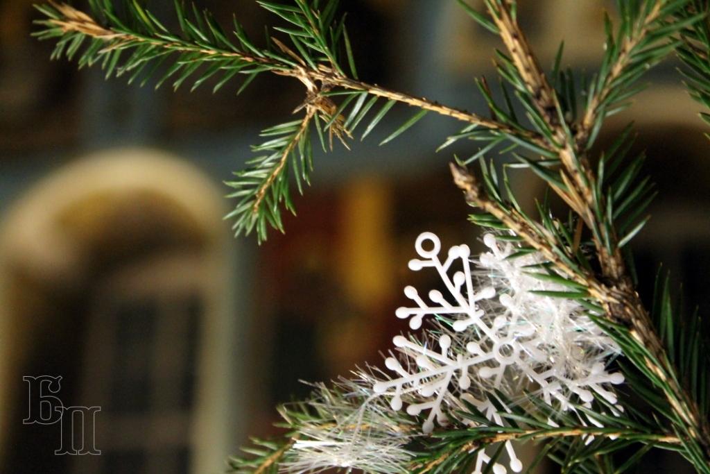 ФОТОГАЛЕРЕЯ: Рождество Христово в Боголеповой пустыни 2019. - Боголепова пустынь
